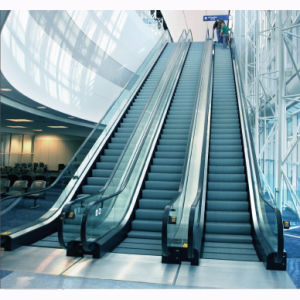 Shopping Indoor Outdoor Home Price Escalator pictures & photos