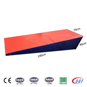 Nice Design Popular Shape Tumbling Mat Kidz Friendly Fitness Mats pictures & photos
