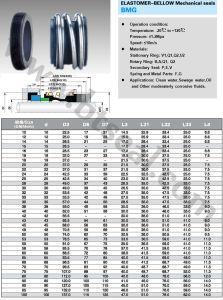 Elastomer Bellow Mechanical Seal (MG1) pictures & photos