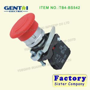 Ba31 Bp31 Ba4322 Bl4322 Push Button 1no 1nc 22mm Flush Push Spring Return pictures & photos