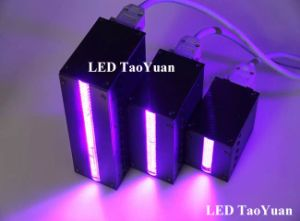 UV LED 395nm Curing Lamp 500W pictures & photos