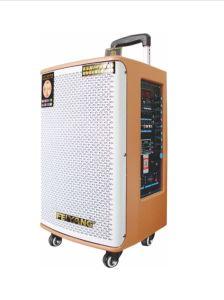 Feiyang/Temeisheng 10 Inch Professional DJ Wooden Speaker Audio Gd10-02 pictures & photos