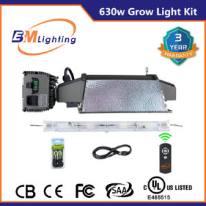 Square Wave Double Ended CMH 630W Digital Grow Light Ballast pictures & photos