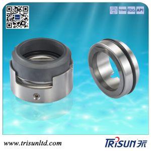 Burgmann Hrn Mechanical Seal, Godwin Pump Seal, Roten, Roplan, AES pictures & photos