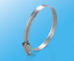 304 Metal Stainless Steel Hose Clamps with Screws pictures & photos