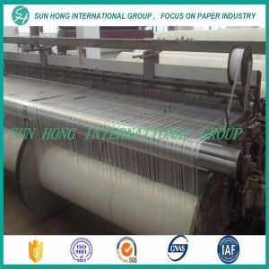 Paper Mill Use Paper Making Press Felt pictures & photos