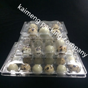China Disposable Clear Plastic Egg Tray Box for Quail Package (plastic tray box) pictures & photos