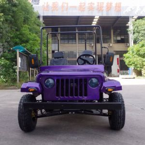 Hot Selling Gas Mini Jeep/UTV/Dune Buggy with Ce pictures & photos