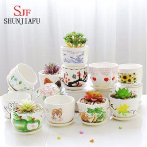 Ceramic Flowerpot Succulent Plants Flowerpot Indoor Outdoor pictures & photos