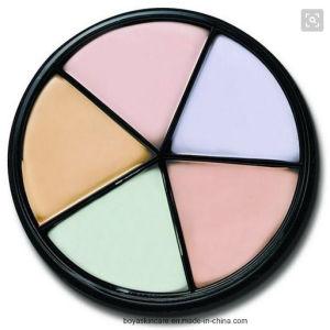 3D Five Colors Concealer Face Makeup Bronzer Makeup Foundation Cream pictures & photos
