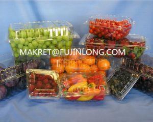Automatic Plastic Egg Tray Vacuum Machine pictures & photos