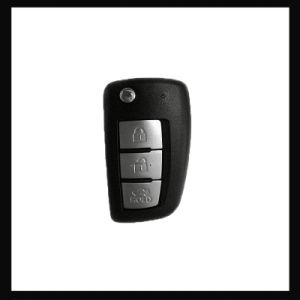 Hot Transporter Key RF Transmitter Remote Car Opener pictures & photos