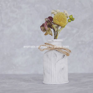 3D Ceramic Bottle Aroma Home Air Freshener (AM-142) pictures & photos