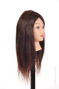 100% Human Hair Lesson Head 16inches for Beauty School Training pictures & photos