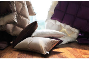 300 Tc Dying Cover White Goose Down Filling Comforter in King Size pictures & photos