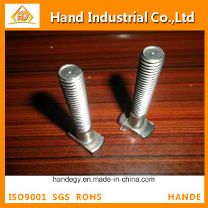 Stainless Steel Competitive Price Ss 304 M2-M16 T Head Bolt pictures & photos