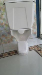Top Quality Wc Toilet Seat with Color Decoration pictures & photos