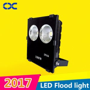 2017 100W New COB IP66 Outdoor Lamp LED Flood Light pictures & photos