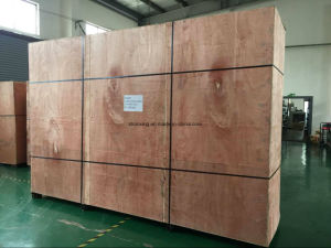 Large Size Vertical Screen Drying Cabinets pictures & photos