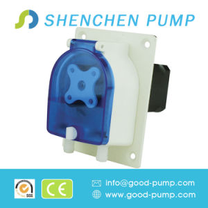 0.08-1000ml/Min DC Brushless Motor OEM Peristaltic Pump pictures & photos