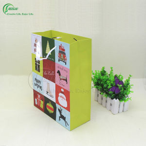 Colorful Shopping Bag (KG-PB066) pictures & photos