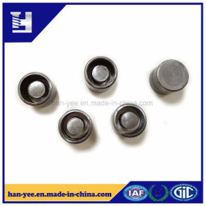 Flexible Insert Rivet Fittings Fastener with Milling Grooved pictures & photos