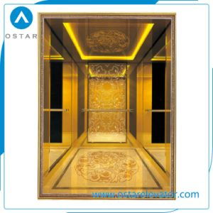 China Manufacture 6 Persons Passenger Elevator for Residential Building pictures & photos