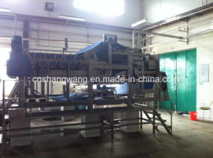 Turn-Key Coconut Water/Coconut Cream Production Line pictures & photos