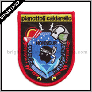 Custom Special Shape Embroidery Patch / Cool Tiger Patch (BYH-1003) pictures & photos