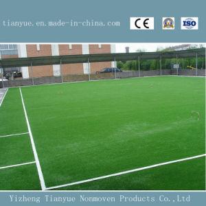 Sport Field Design Outdoor Grass Carpet pictures & photos