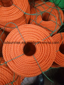 PE Color Rope in Virgin 5000s Material pictures & photos