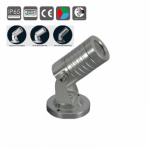 1W/3W R/G/B/W/Y/RGB IP65 Outdoor LED Garden Light, Palm Tree Light pictures & photos