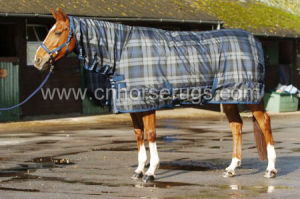 Horse Winter Rug-Combo Style pictures & photos