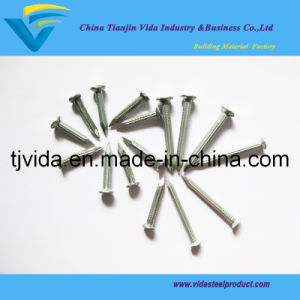 "Galvanized Steel Concrete Nails (3"") pictures & photos"