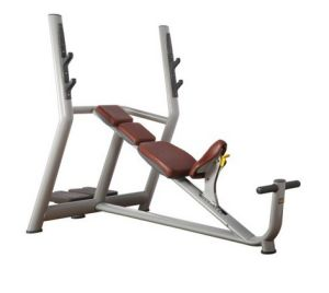 Commercial Fitness Equipment / Incline Bench (9831)