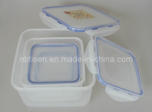 Plastic Lunch Box/Food Storage Container (TS-W10)
