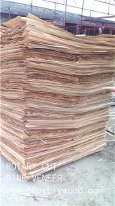 Pine Wood Veneer - Face Film Pine Veneer - Big Size Veneer -up 0.8mm