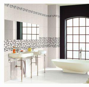 Ceramic Tile (0560)
