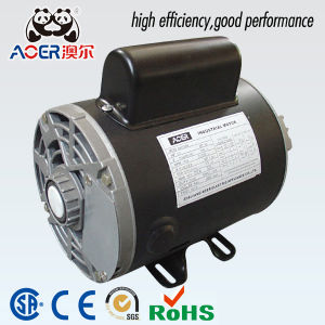 Chinese Outboard Forward Reverse 120 V Electric Motor