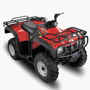 250cc Air Cooled ATV (SBP-ATV250A)