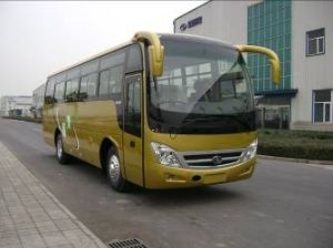 Bus and Bus Chassis (SLG6840T3E)