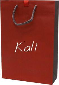 Paper Shopping Bag (WF-6003)