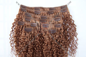 Clip on Hair Extension (AV-HE023) pictures & photos