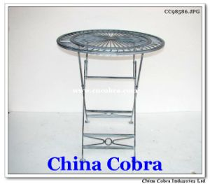 Newest Design Garden Metal Table Home Metal Table (CC98586)