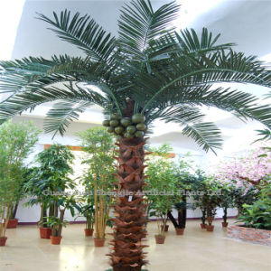 98% Similarity Artificial Coconut Tree (for Indoor /Outdoor Decoration)