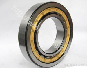 Auto Parts, Hardware, Rolling Bearing, Cylindrical Roller Bearing (N217ETN1)