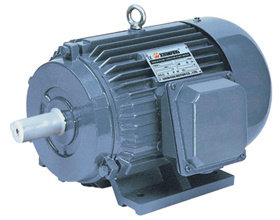 Industry Motor (Y Series Three Phase Induction Motor ) pictures & photos