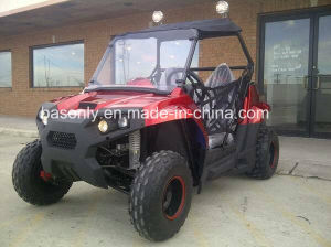 New Odes Blazer 170 Efi UTV pictures & photos