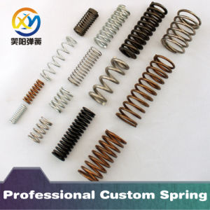 Customized Various Spring According to Your Requirement pictures & photos