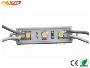 LED Module/ Waterproof LED Module/ LED Light/ LED Signs pictures & photos